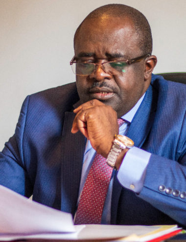 """Conflit homme-faune à Mékambo/declaration de Dieudonné Minlama : """"Mekambo nous interpelle tous"""""""