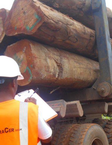 Accès des bois transformés de la ZES de Nkok sur le marché international : une décision qui consacre la reconnaissance du Système de Diligence Raisonné TRACER-DR utilisé par sa Filiale FRM-Gabon